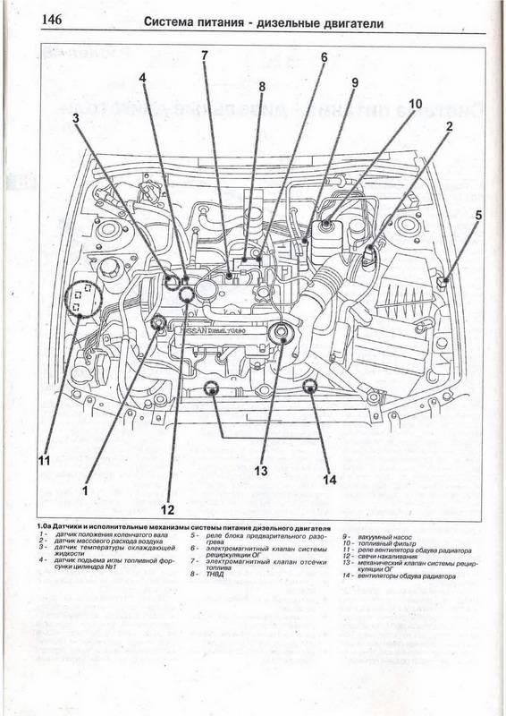 Инструкция по эксплуатации nissan primera p11